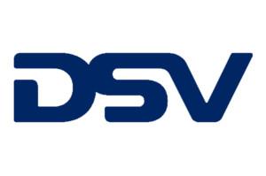 DSV Logo for MrCCTV